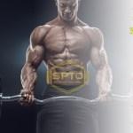 Os 30 principais exercícios de Força e Hipertrofia
