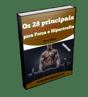 Os 28 principais exercícios para Força e Hipertrofia