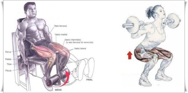 extensão-de-joelhos-agachamento