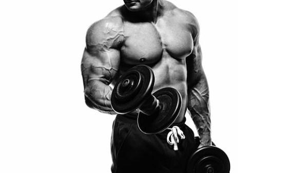 aumento massa muscular