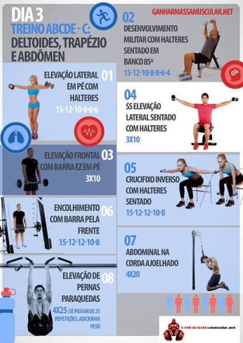 Planilha de treino de musculação abcde