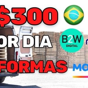 GANHE R$300 POR DIA TRABALHANDO PARA MAGAZINE LUIZA   MERCADO LIVRE   CASAS BAHIA