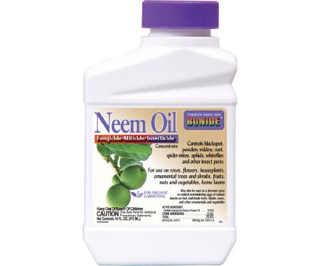 neem oil_conc
