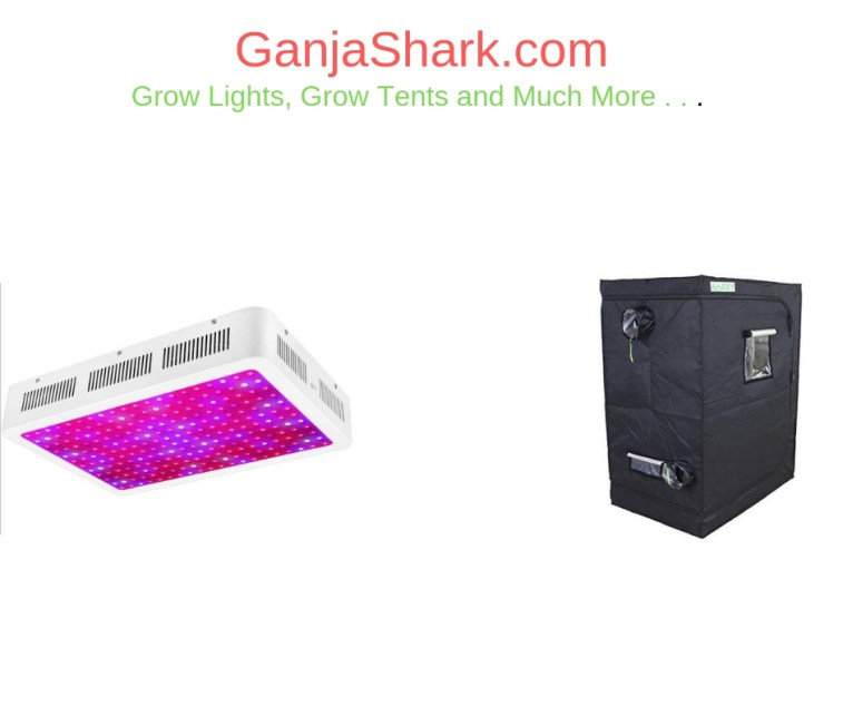 Best led grow lights and best grow tents