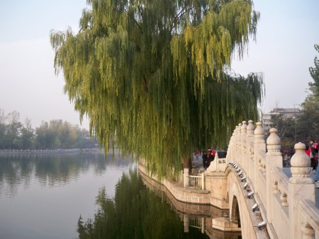 Qinhai Lake