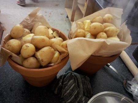Pots of potatoes