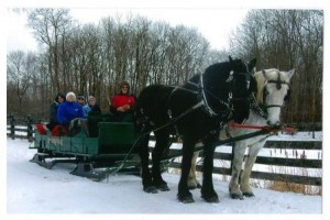 Maggie Hegarty (in white cap), volunteer Tour Coordinator at the Clearfield Center for Active Living, is shown on a recent sleigh-ride tour of Riverstone Estate at Foxburg.  Two spring tours are planned for those interested: the Cherry Blossom and Historic Tour in Washington in April, and the Dogwood Tour and Carriage Ride in May. (Provided photo)