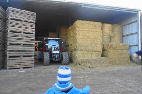 Traktor, Ferien auf dem Bauernhof, Schäferei Rolfs