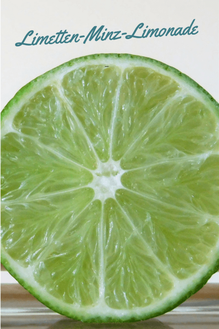 Erfrischendes Rezept: Selbstgemachte Limonade mit Limetten und Minze. Fruchtig, leicht und ds richtige Getränk für den Sommer und fürs Grillen.