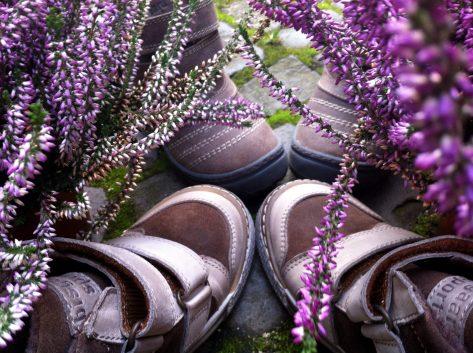 Bisgaard Schuhe