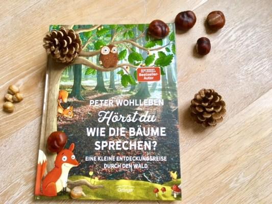 ein buchtipp für Erstleser und zum Vorlesen: Ein Sachbuch über den Wald für Kinder, Kinderbuch auch eine Geschenkidee zu Weihnachten #kinderbuch #geschenkidee
