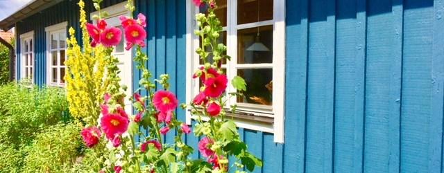 Wieso Schweden perfekt für den Familienurlaub ist: Gründe für den Scjwedenurlaub, Reisetipps für den Urlaub mit Kindern in Schweden