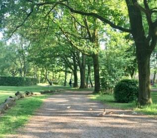 CAmpingplatz Beekse Bergen Hilvarenbeek Holland