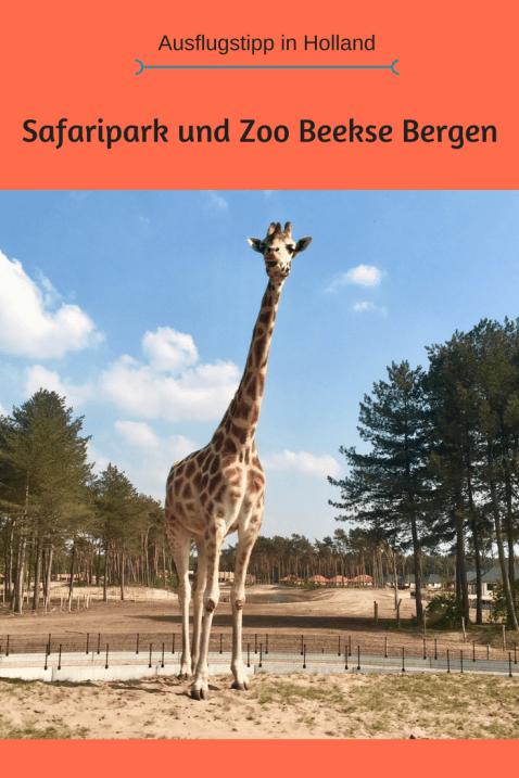 Ausflugstipp in Holland: Safaripark Beekse Bergen bei hilvarenbeek und Eindhoven. Zoo mit Kindern ideal für einen Familienausflug