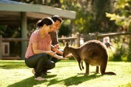 Photo courtesy of Tourism Victoria