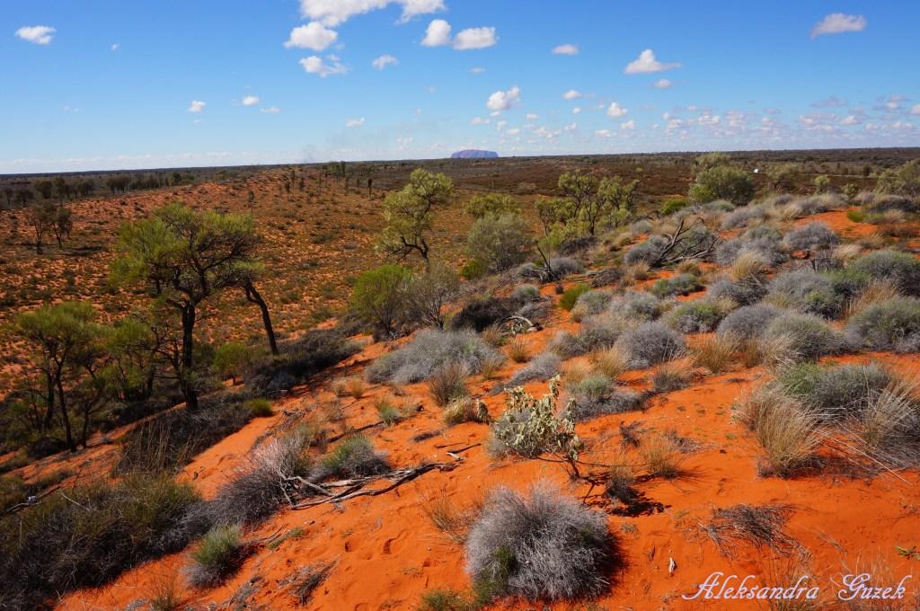 Uluru z oddali