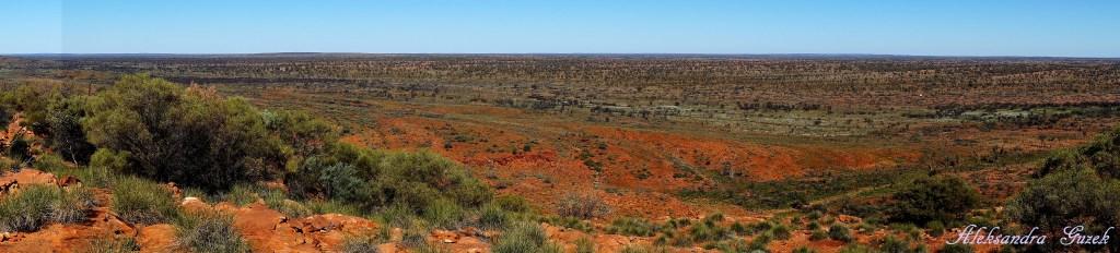 Widoki za zachód, pięknie przenikające się kolory! Gdzieś ta jest droga do Kings Kanyon :-)