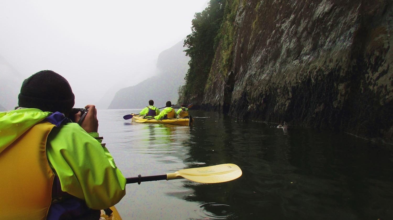 kayaking in  Milford Sound