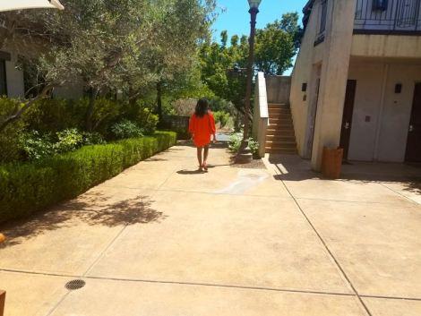 Image of woman walking towards a vineyard.