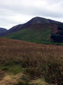 Grisedale Pike from Kinn