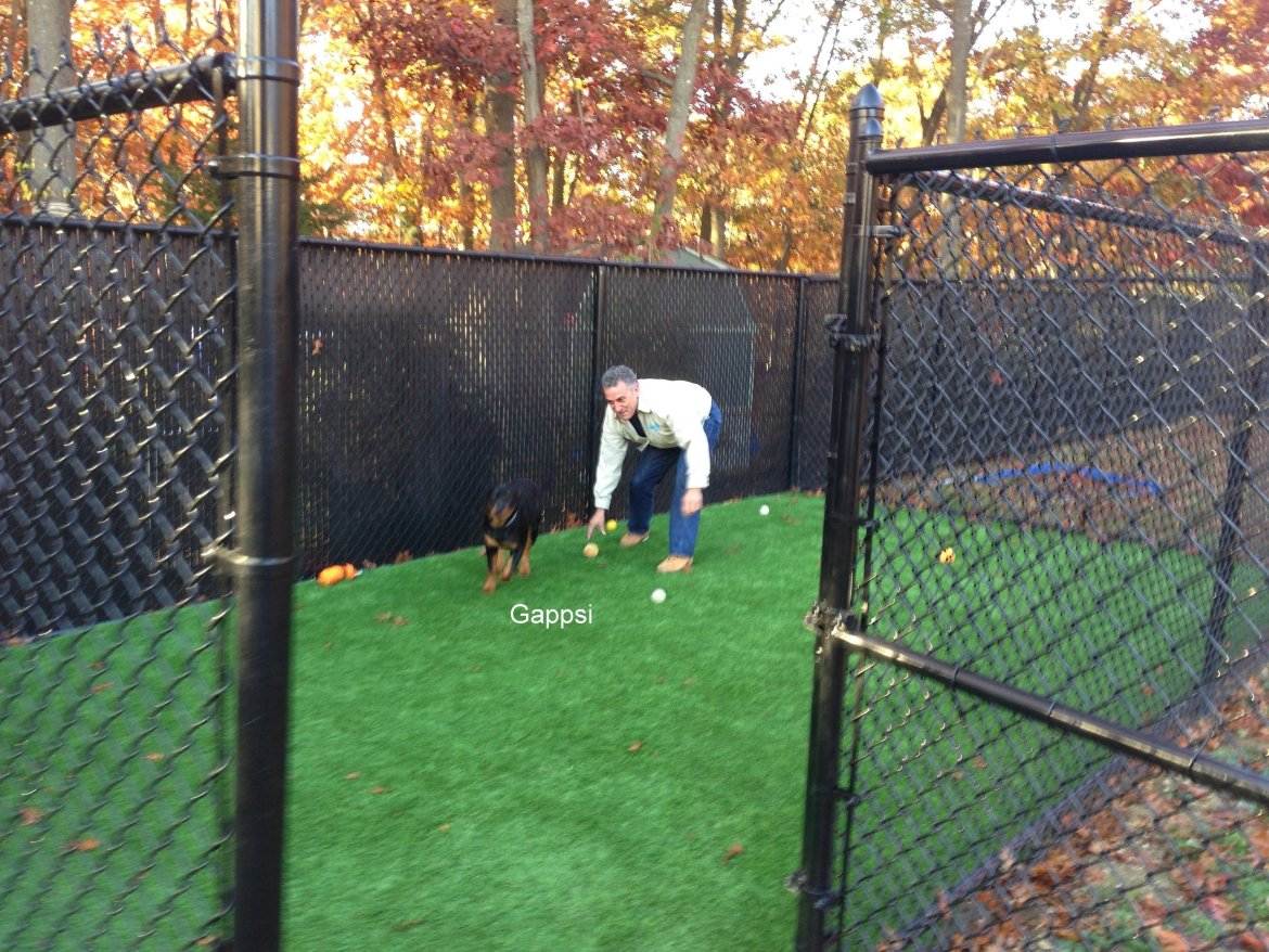 Dog run built by Gappsi with Newport3dnK9 ultra