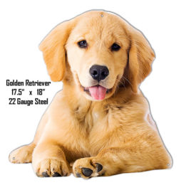 cute young golden retriever dog