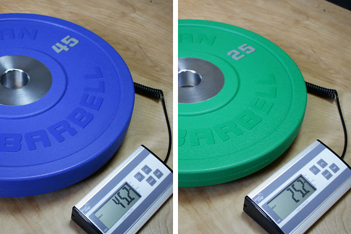 American Barbell 45 lb and 25 lb weight Garage Gym Lab