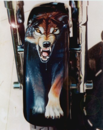 Harley Davidson front fender with wolf image that fades back into the black base color. All hand air brushed