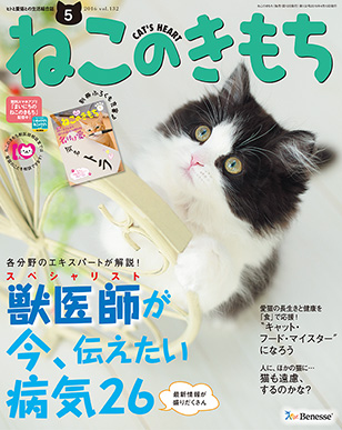 img_cat_cover