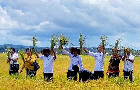 Rapor Lakamola Anan Sio, Sistem Pertanian Tradisional di Rote Ndao
