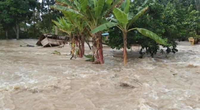 Waspada Bencana Hidrometeorologi, Banjir Landa Sejumlah Wilayah Indonesia
