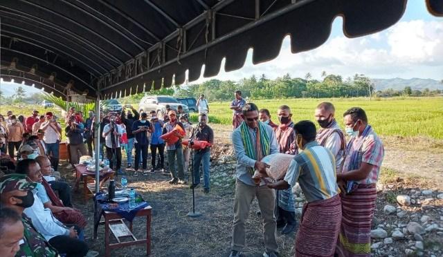 Kadis Pertanian NTT: Sekian Lama NTT Bergantung Benih pada Provinsi Lain