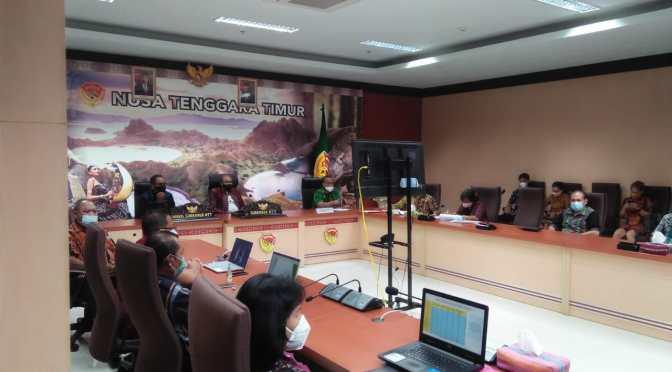 Pelatihan Vaksinator Covid-19 di Tiga Provinsi Dibuka Gubernur NTT