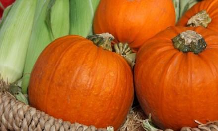 Herbstliche Dekoration mit Kürbis