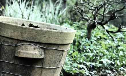 Hochbeete – Pflegeleicht, praktisch, schick!