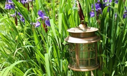 Kreative Dekoelemente für den Garten