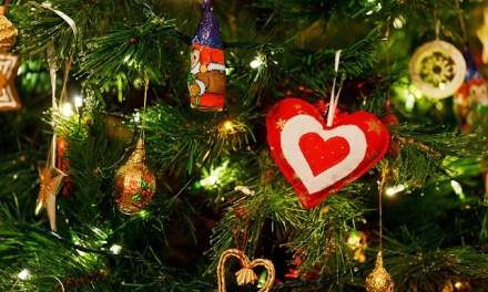 Statt Drinnen: Weihnachtsbäume auf der Terrasse