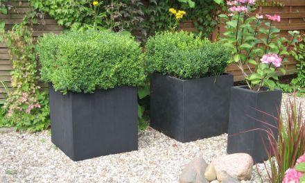 Pflanzkübel für einen winterfesten Garten verwenden