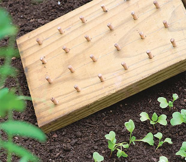 Buchrezension: Rein in den Frühling mit 75 grünen DIY-Projekte
