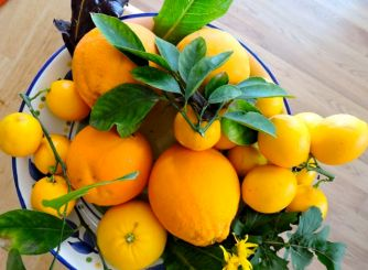 bowl of lemons and oranges January 2017