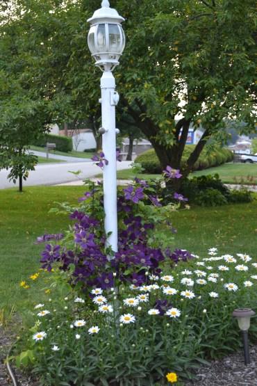 Lampost Garden