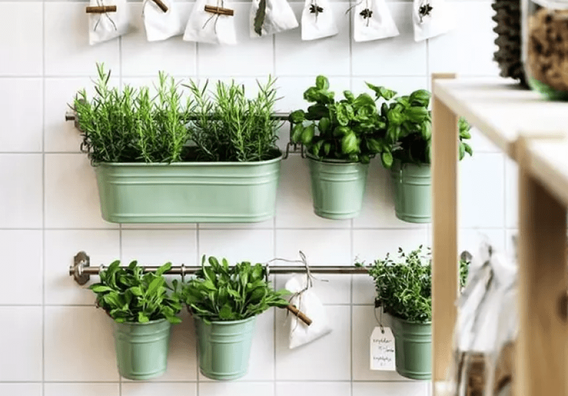 utensil rack herb garden