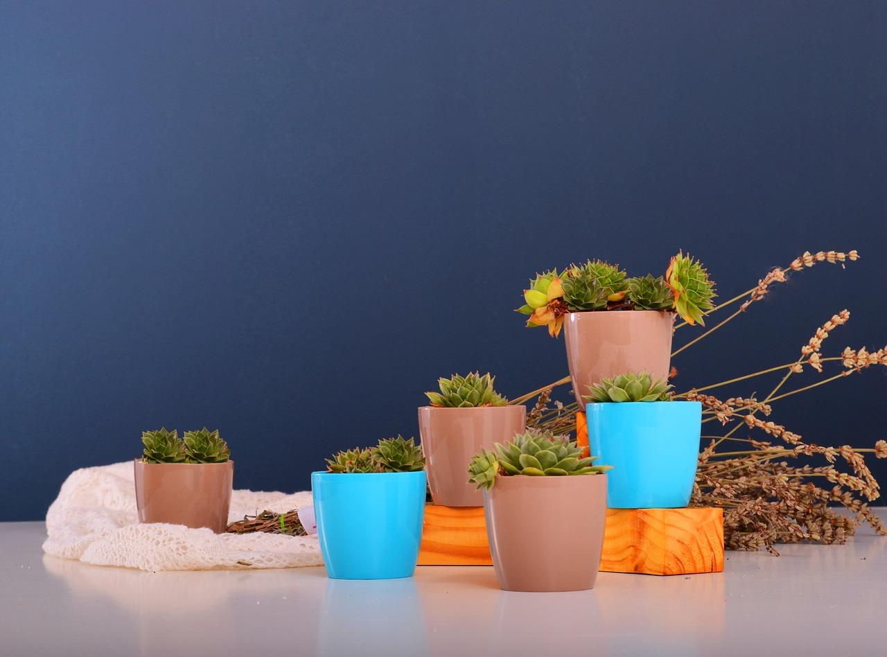 20 Brilliant Indoor Herb Garden Ideas to Brighten Your Space