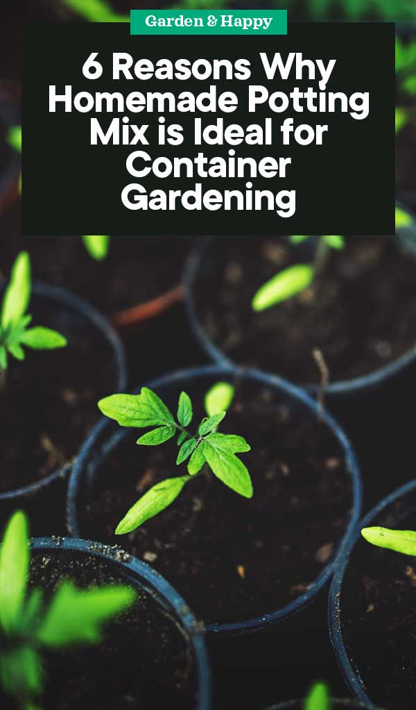 Read on to learn why you should make your own potting mix, as well as which nutrients to add for various species.