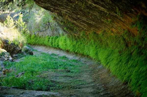Limestone cutbank in Bear Creek on one of the WQPL lands