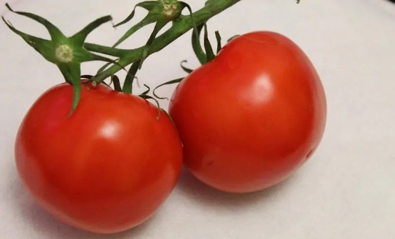 is tomato fruit or vegetable