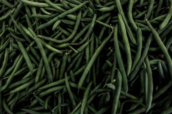 Beans vegetables to grow in may