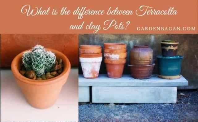 What is difference between Terracotta and clay Pots