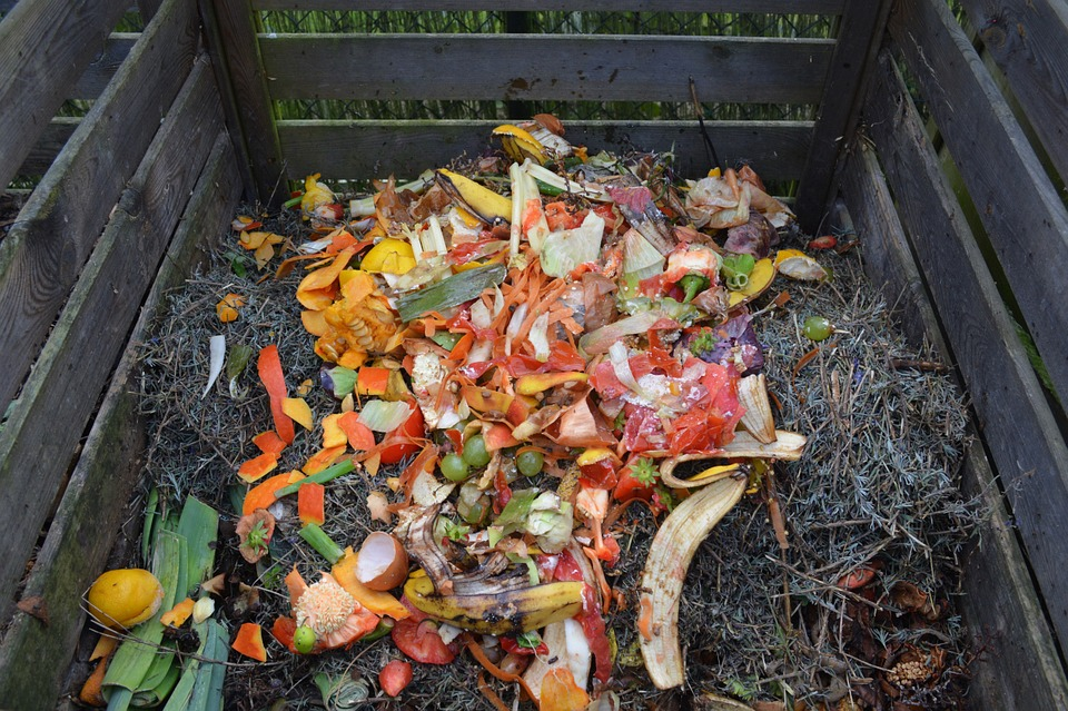 """A pile of """"green"""" materials lying on top of a compost pile."""