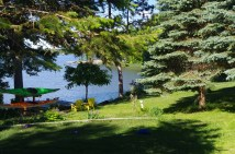 Looking toward the lake.